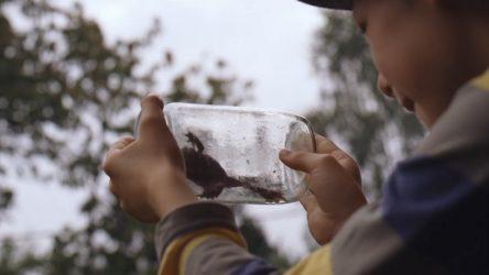 Zapletalův film Prach je součástí nové ediční řady Cyklus Citrus
