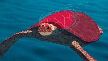 Animovaný film postrádá otevřené producenty a distributory