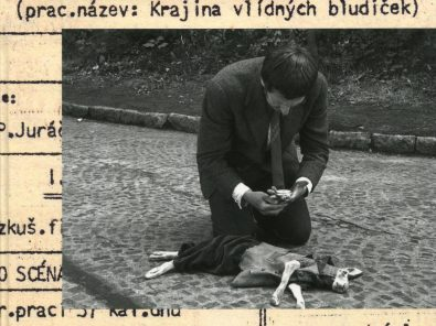 Kniha Zpět k českému filmu