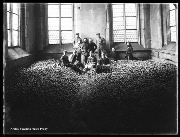 Pohled na zásoby jablek v místnosti obecní zásobárny v Praze, kol. 1915 (foto: Archiv hlavního města Prahy)