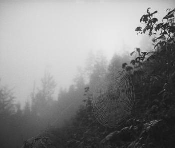 Objevovali jsme kinematografii. Rozhovor s Jiřím Weissem o československých dokumentech třicátých let